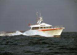 Dongara Marine, Western Australia - Ausmarine lobster boatbuilding