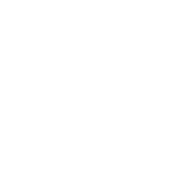 White ISO 9001 Quality Certification lgo